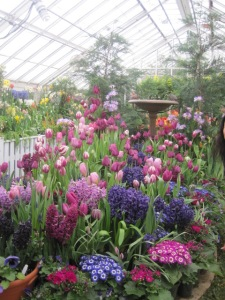 Smith College Bulb Show 009