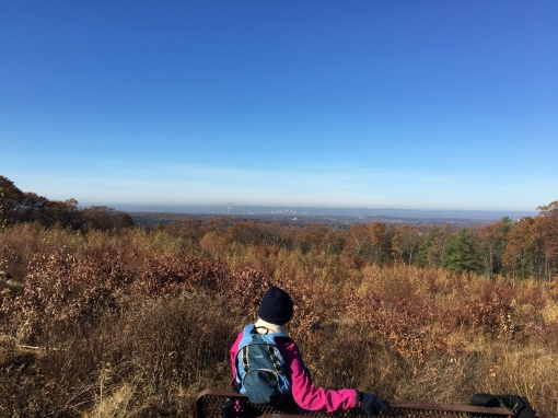 Manchester Case Mt overlook 11.15.17